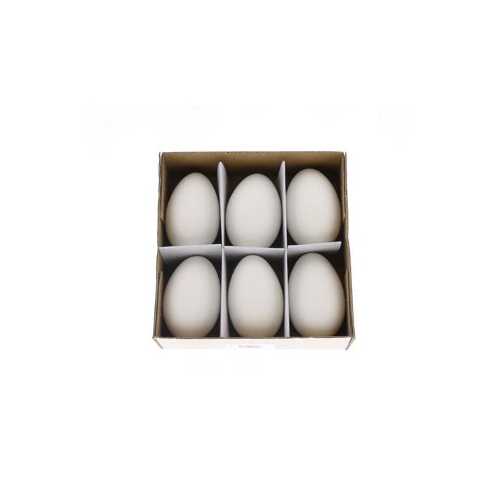 <h4>Egg Goose Xl White Box (6 Pcs)</h4>