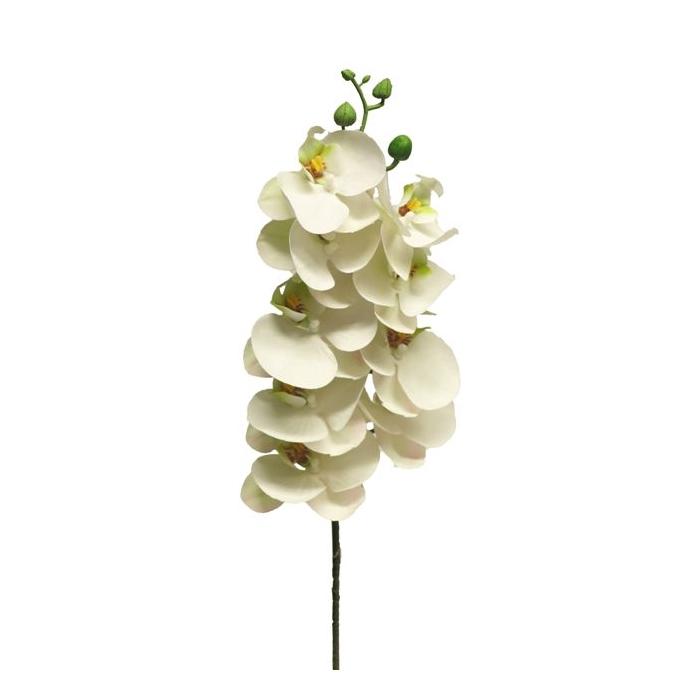 <h4>SILK FLOWERS - PHALAENOPSIS SPRAY BORA WHITE 77CM</h4>