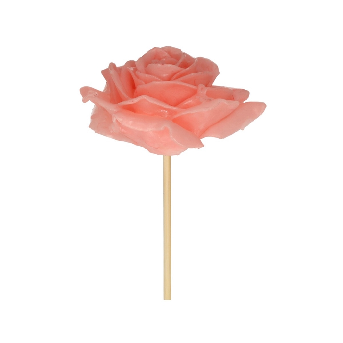 <h4>Bijsteker 10cm Wax roos d10cm</h4>