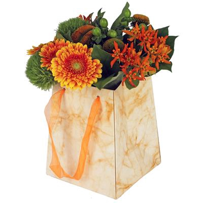Bag Marble carton 12/12x15/15xH18cm orange