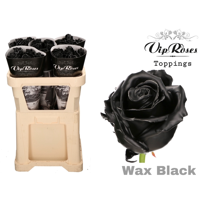 <h4>R GR WAX BLACK x 25</h4>