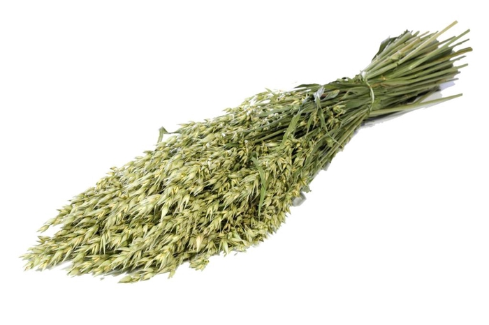 Haver (avena) green natural