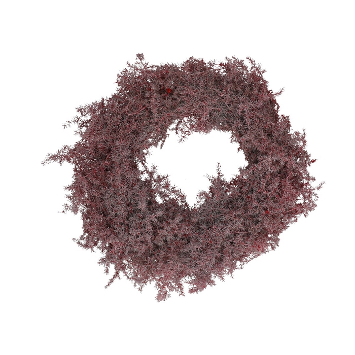 <h4>Wreath d25cm Asparagus wax</h4>