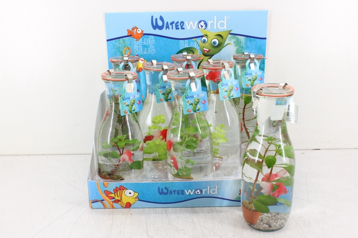 <h4>arr. WW - Glas weckpot L 2 blub</h4>