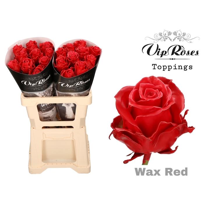<h4>R GR WAX RED (60CM)</h4>