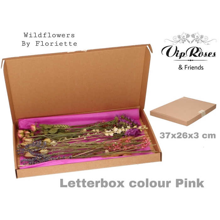 <h4>DRIED LETTERBOX PINK</h4>