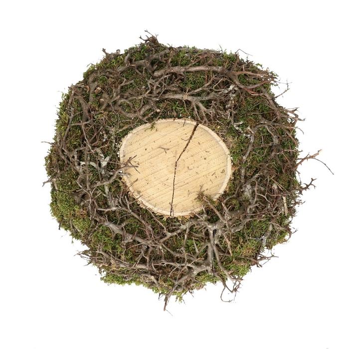 <h4>Dried articles Basic bonsai+moss plate d40cm</h4>