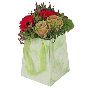 Bag Marble carton 12/12x15/15xH18cm green