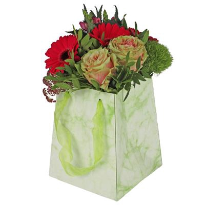 <h4>Bag Marble carton 12/12x15/15xH18cm green</h4>