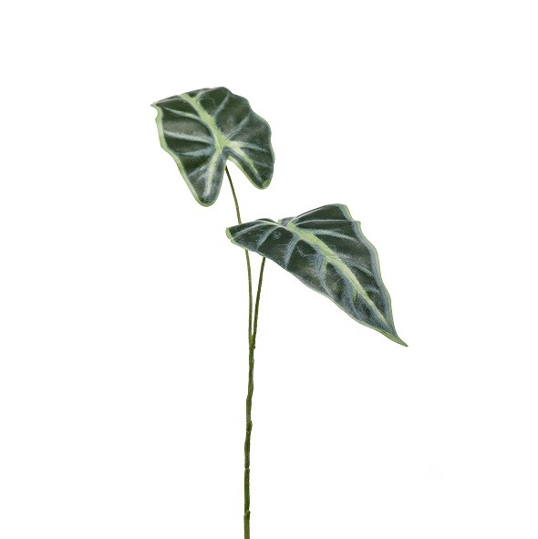 <h4>Silk Alocasia leaf 55cm</h4>