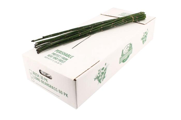 <h4>Bamboe</h4>