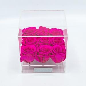 Plexi 15cm fuchsia rozen