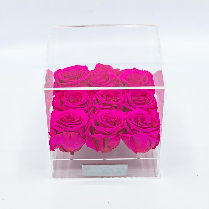<h4>Plexi 15cm fuchsia rozen</h4>