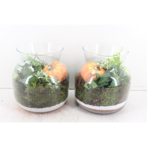 arr. PL - Glas bose breed 344/2 - oranje/wit