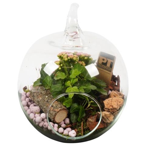 <h4>PTIG8151 Arrangementen planten in schaal</h4>