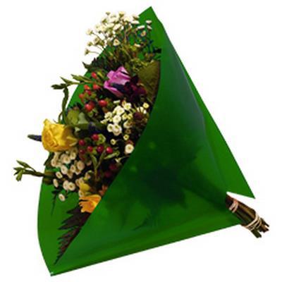 <h4>Housses 35x35cm Angelo OPP50 Pearl vert</h4>