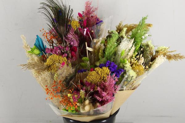 <h4>Df Bouquet Dutch Rainbow Large</h4>