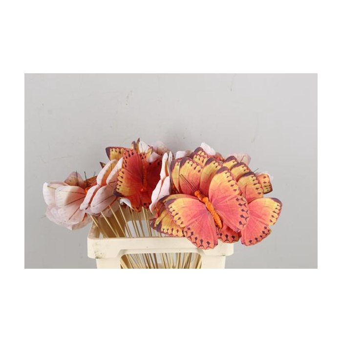 <h4>Stick Butterfly Fabric Orange</h4>