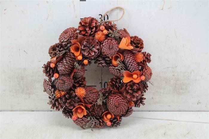 <h4>5324 Wr. Noble Orange Christmas D30 H7 H7d30cm</h4>