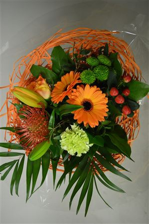 <h4>Sisal Oranje</h4>