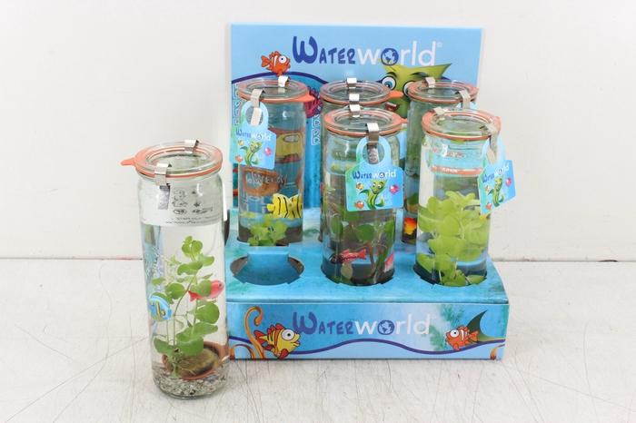 <h4>arr. WW - Glas cilinder 2 blub</h4>