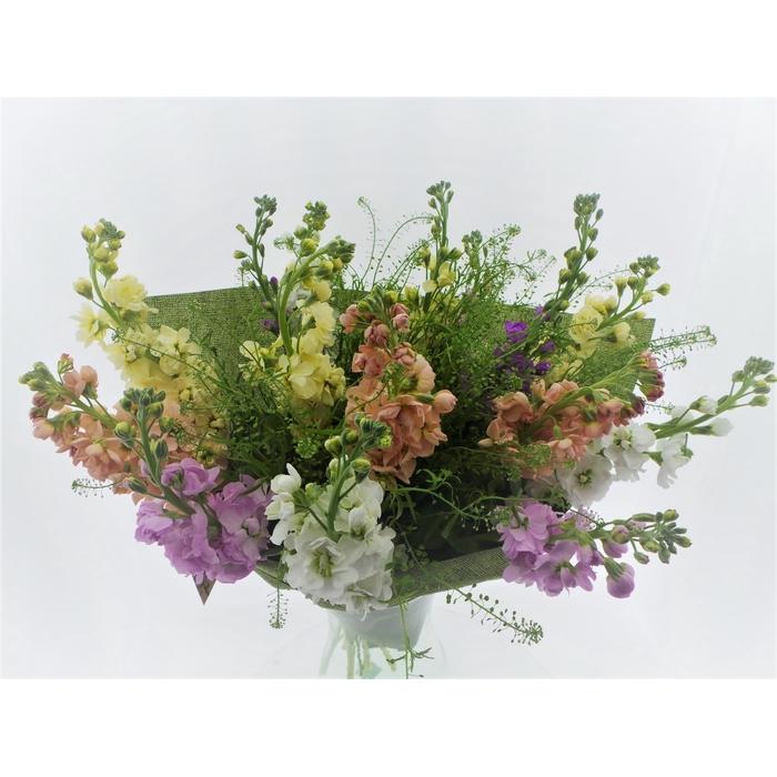 <h4>Bouquet Field Jacky</h4>