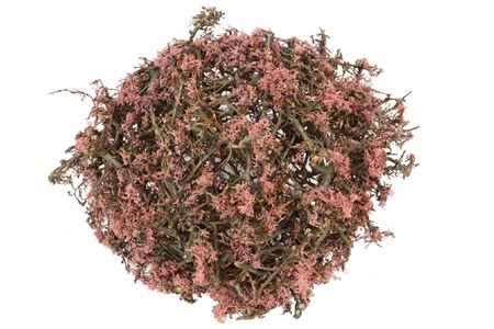 <h4>Ball Bonsai Mossed D35.0 Nat/pink</h4>