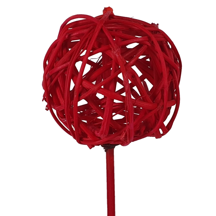 <h4>Bruce ball 5cm on stem Hot cerise</h4>