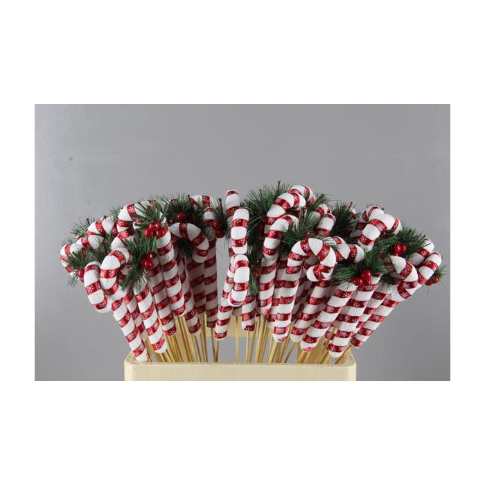 <h4>Stick Candy Cane Red/white</h4>