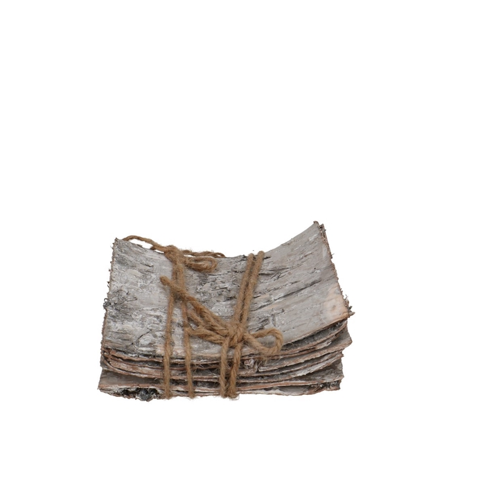 <h4>Dried articles Cortex Birch 15*15cm x10</h4>