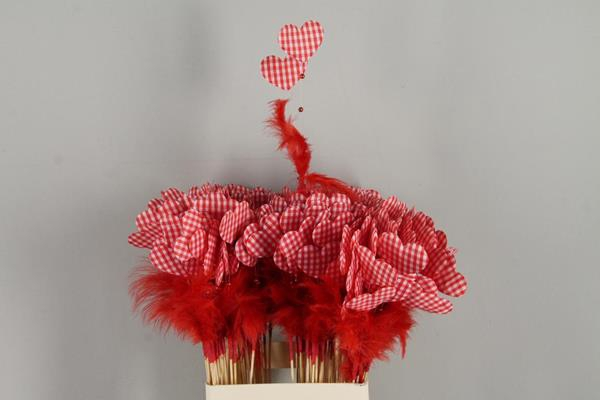 <h4>Stick Heart+feather+pearl Red</h4>