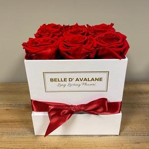 Box vk 15cm wit-rood