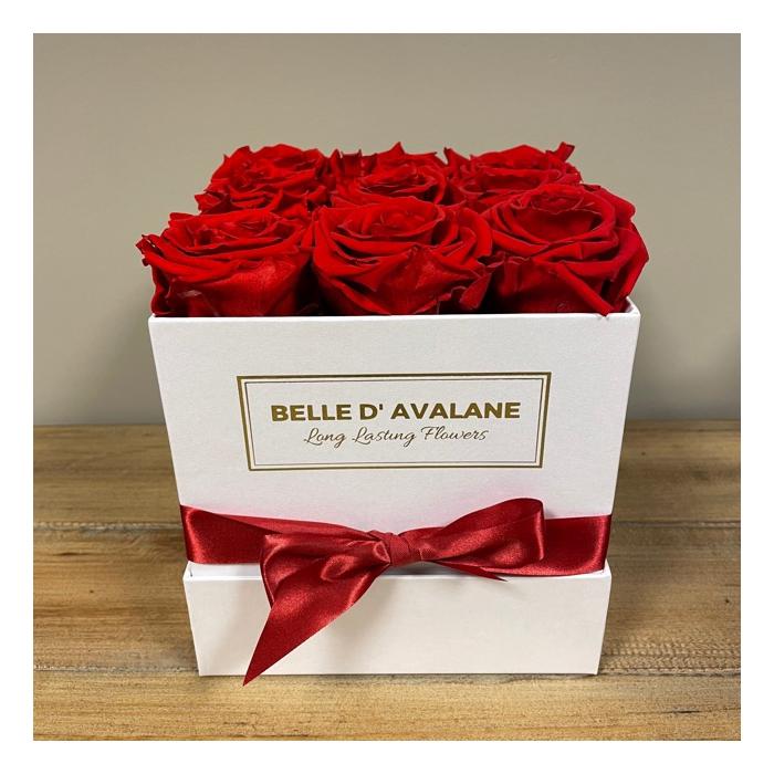 <h4>Box vk 15cm wit-rood</h4>