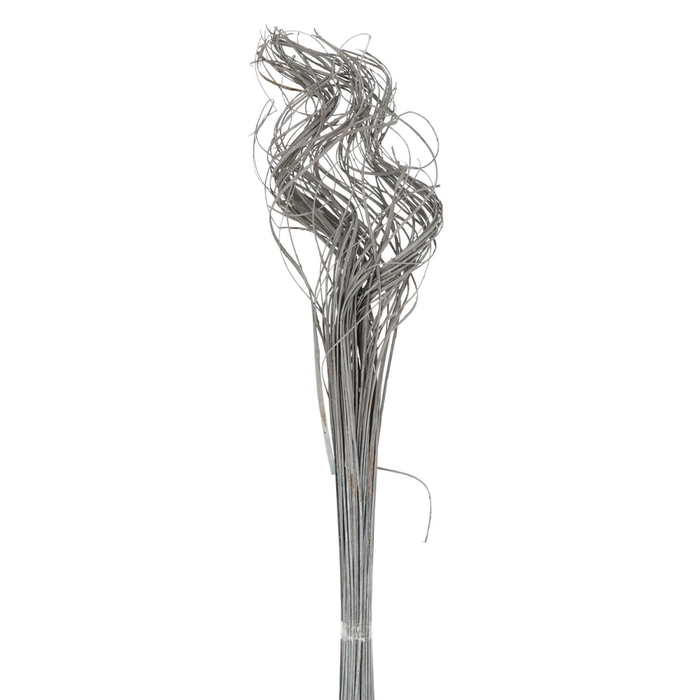<h4>Dried articles Curly TingTing 55cm x100</h4>