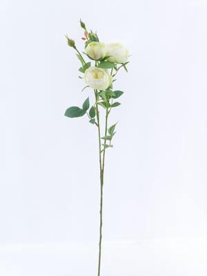 <h4>Af Rose Spray Vh Cream</h4>