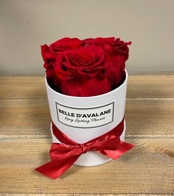 Box rd 10cm wit-rood