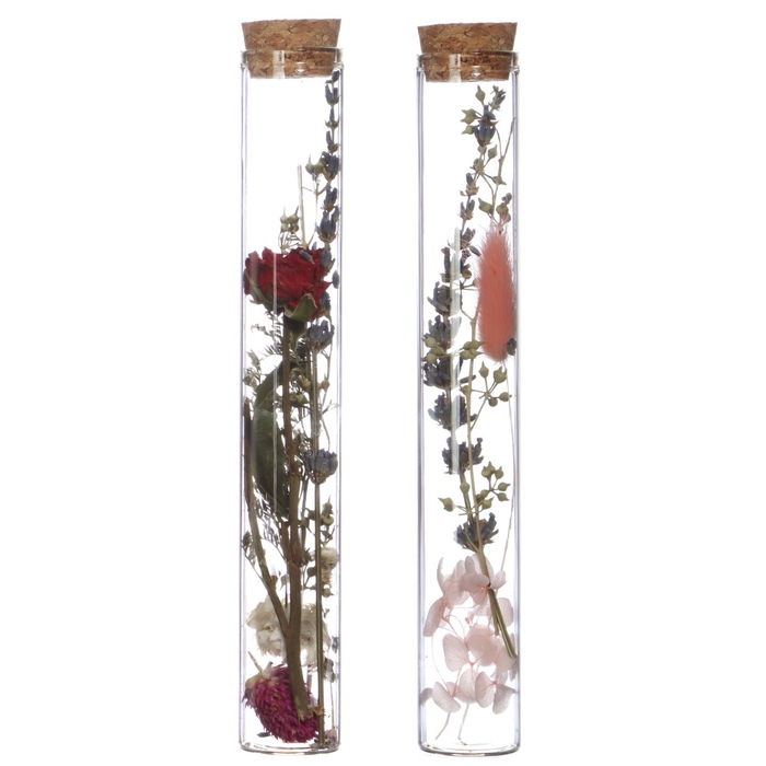 <h4>Dried flowers Glass+dried flower d3*20cm</h4>