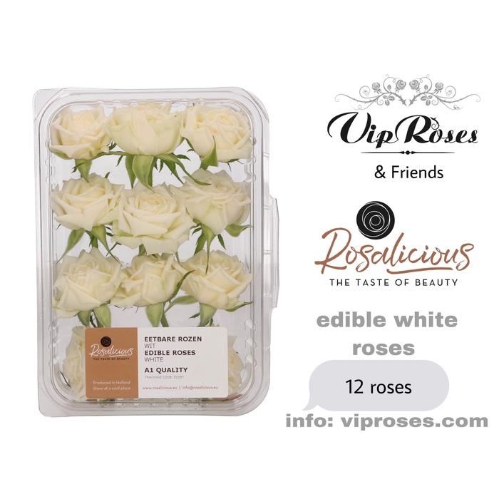 <h4>R EDIBLE ROSALICIOUS WHITE</h4>