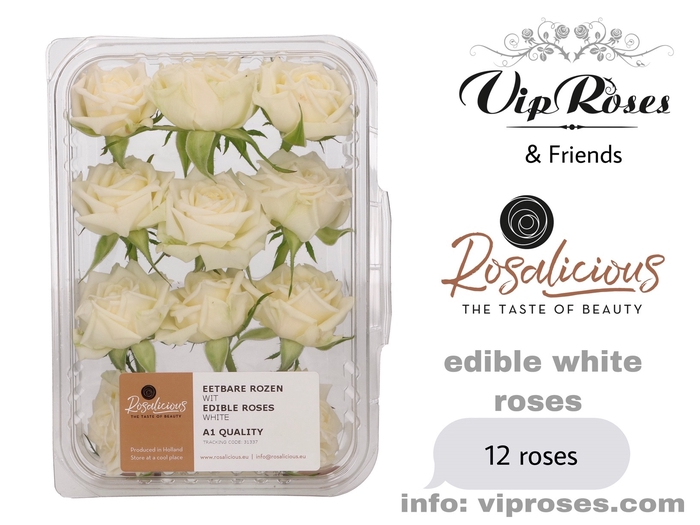 <h4>R EDIBLE ROSALICIOUS WHITE</h4>