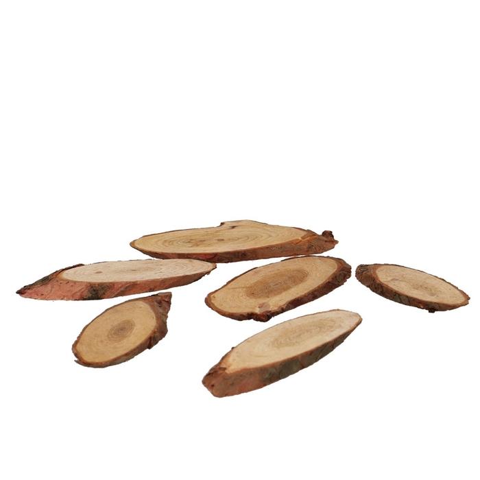 <h4>Droogdeco Houtschijf pinewood 250g</h4>