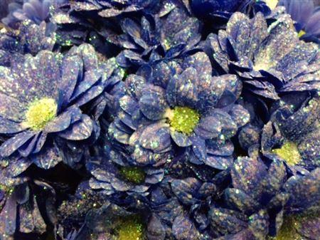 <h4>Chr T Bacardi Blue + Glit</h4>