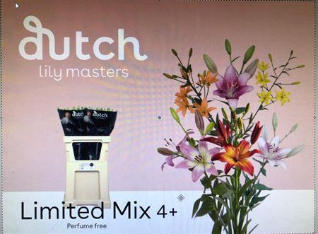 <h4>Li La Limited Mix</h4>