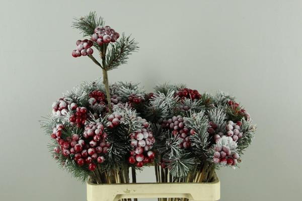 <h4>Stick Berries Red/pinus+snow</h4>
