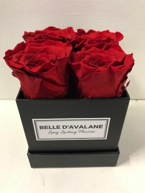<h4>Flowerbox vk 10cm zwart/rood</h4>