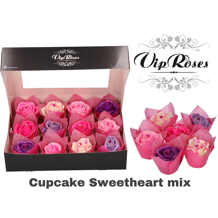 <h4>R GR CUPCAKE SWEETHEART MIX</h4>