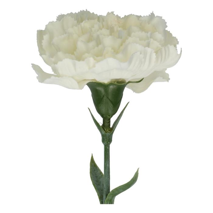 <h4>Silk Anjer 65cm</h4>