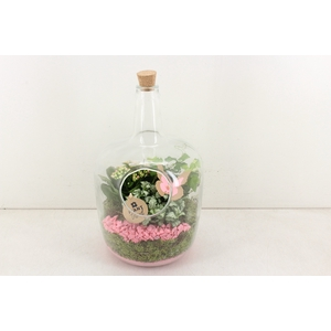 arr. PL - Glas fles kurk XXL 800 - roze