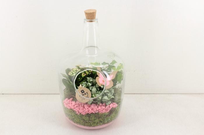 <h4>arr. PL - Glas fles kurk XXL 800 - roze</h4>