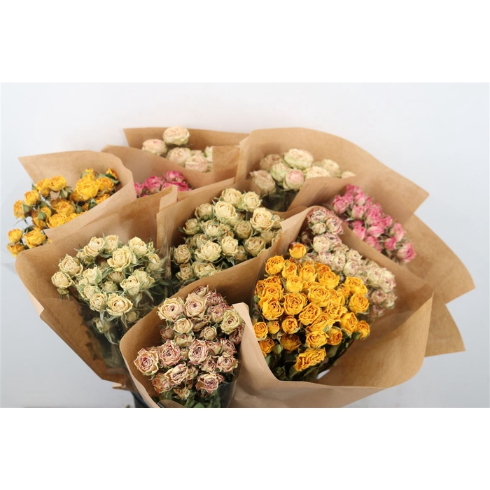 <h4>DRIED FLOWERS - ROSES MIX X10</h4>