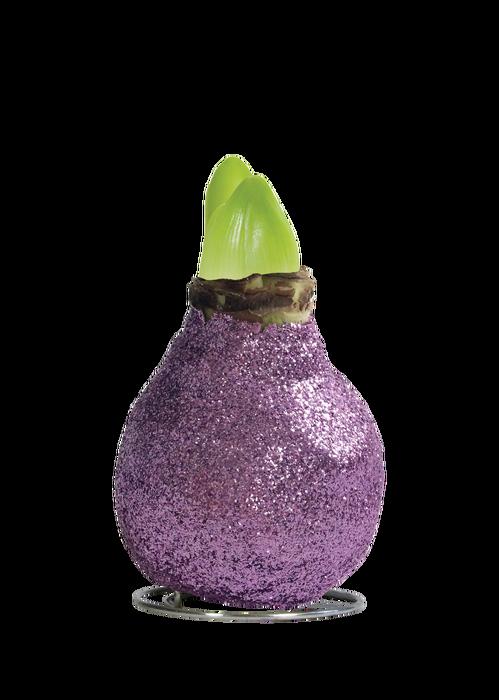 <h4>WAX AMARYLLIS Touch of Magic Lavendel</h4>
